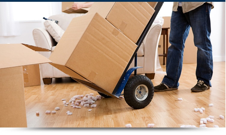 Image result for Removal Services